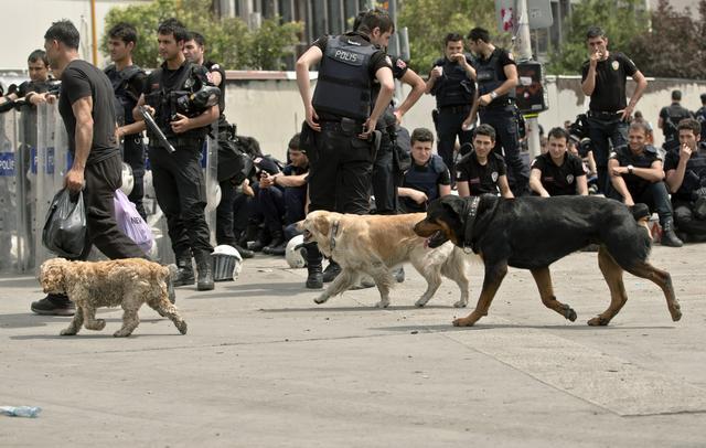 Nj�sitet e Policis� s� Turqis� duke pushuar | Foto: BETA