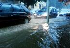 """""""Liqeni"""" i Prishtin�s"""